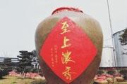 恭喜本公司官网正式上线!